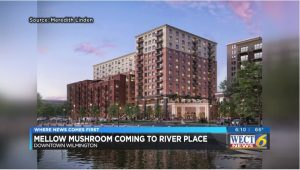 Mellow Mushroom expected to open location in downtown Wilmington